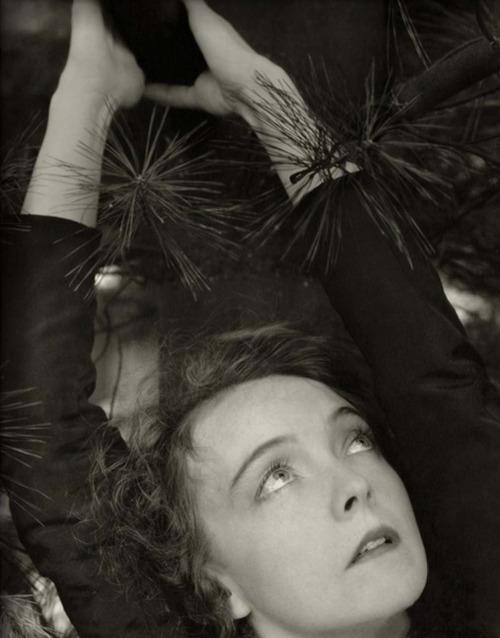 10t_Lilian Gish by Edward Steichen, 1934-1
