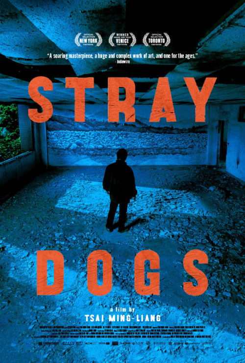 1_US one sheet for STRAY DOGS (Tsai Ming-Liang, Taiwan, 2013) Designer - F Ron Miller.jpg